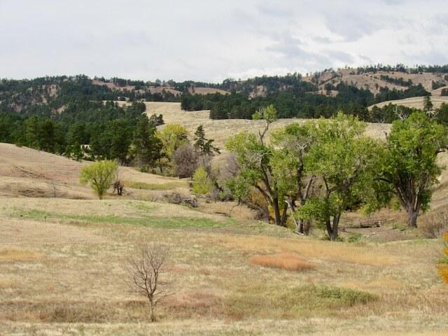 Spring-fed creek meanders.